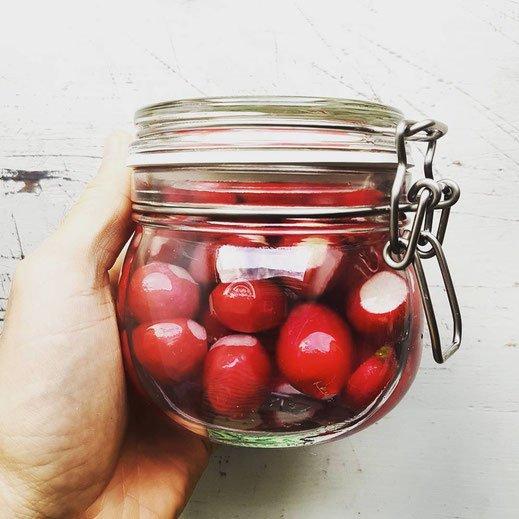 Radieschen fermentieren