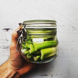 Sellerie fermentieren