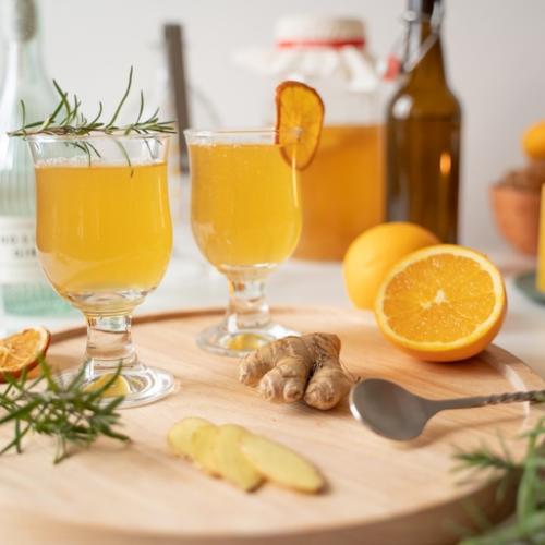 Kombucha Cocktail, Kombucha, Citrusfrüchte, Ingwer