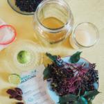 Wasserkefir mit Holunderbeeren, Fairment, Fermentation