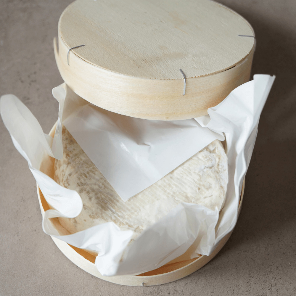 Veganen Käse selber machen Holzbox