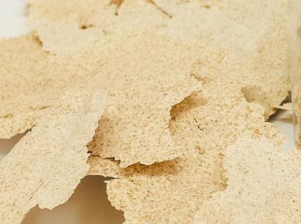 Trockensauerteig, Sauerteigextrakt